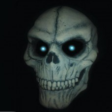 Skeleton v2 (half)